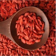 Premium Dried Red Goji Berry Fruits