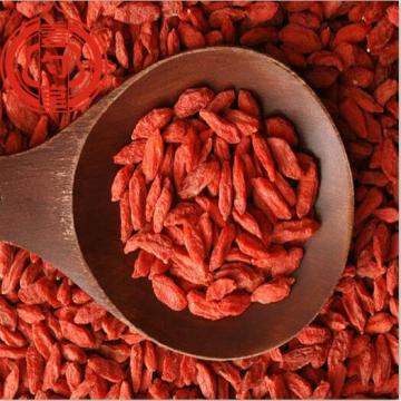 Baies de Goji rouges Premium Goji aux fruits secs