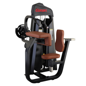 Professional Gym Fitness Equipment Seated Biceps Curl