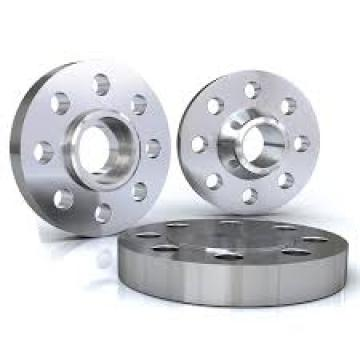 10 Years manufacturer for Stainless Steel Flange SS316 flanges weld on pipes SS316 flange DIN2573 export to Reunion Supplier