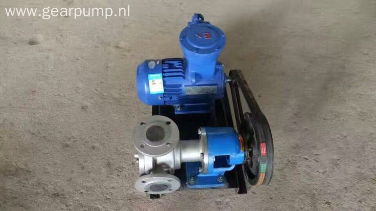 Stainless steel electric cooking oil gear pump