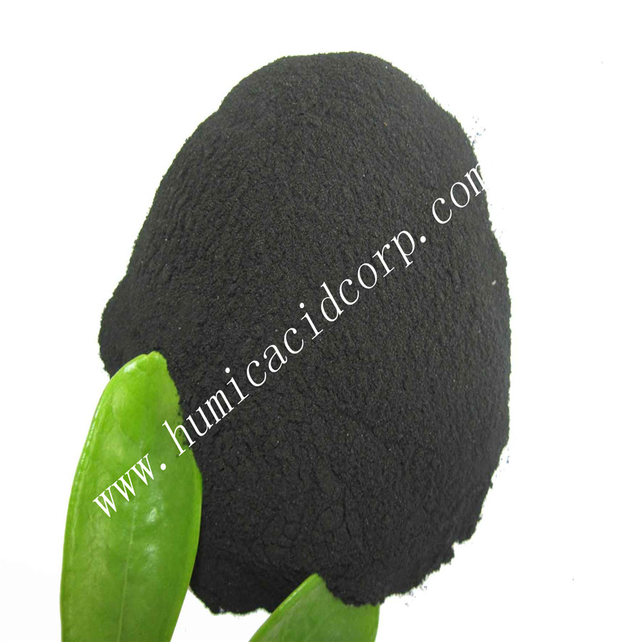 Nitro Humic Acid Powder/Granule Base fertilizer For Soil