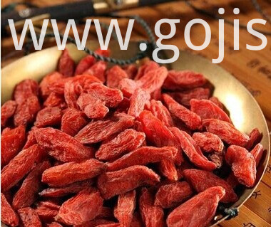 Nourishing Goji berry