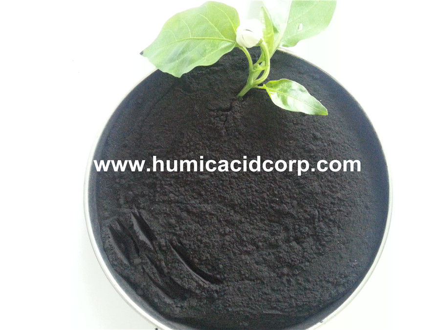 Humic Acid With 85 Organic Matter