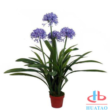 Real textured artificial homeplant potted with free sample