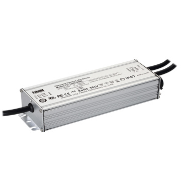 Led Outdoor Landscape Lighting 160W Led Driver