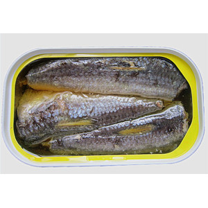 Canned Tuna Fish in Brine or Oil Low Price