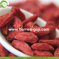 Lose Weight Dried Natural Healthy Tibetan Goji Berries