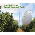 Anti Hail Net For Agriculture