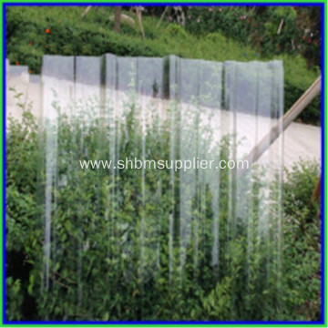 Green House Roof Transparent FRP Roofing