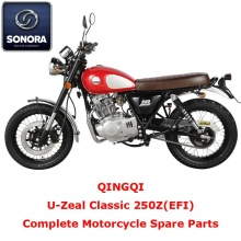 Qingqi U-Zeal Classic 250ZEFI Complete Motorcycle Spare Part