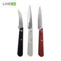 Paring Knife Set 3-Piece Colorful Wood Handle