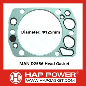 MAN D2556 Head Gasket