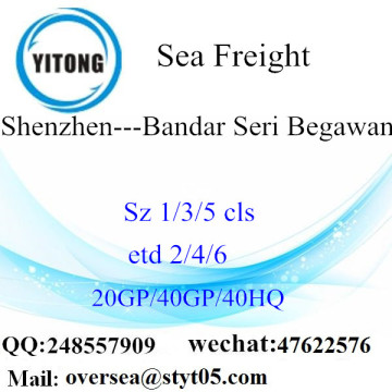 Shenzhen Port Sea Freight Shipping To Bandar Seri Begawan