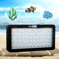 Led Aquarium Lighting For Reef Coral Fish Tank