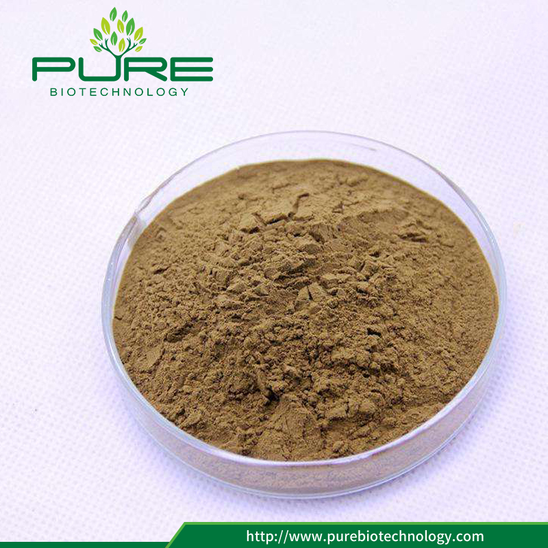 Tribulus Terrestris Fruit Extract Powder