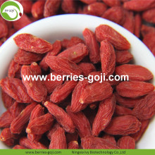 Lose Weight Fruit Nutrition Natural Tibet Goji Berry