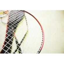 Wholesale Low Price Badminton Racket