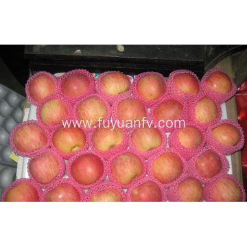 Export Standard Quality of Fresh Fuji apple