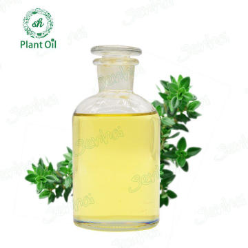 Excellent Aroma Fresh Thyme Essential Oil