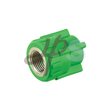 PPR Female thread adapters