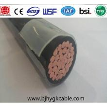 RHH / RHW-2 / USE-2 Building Wire 600 V Cu / XLPE