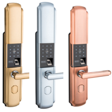 EVDTF5227 smart home door lock