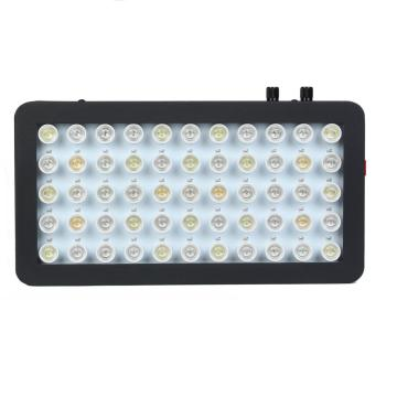 Νέα φώτα Aquarium Light Coral LED