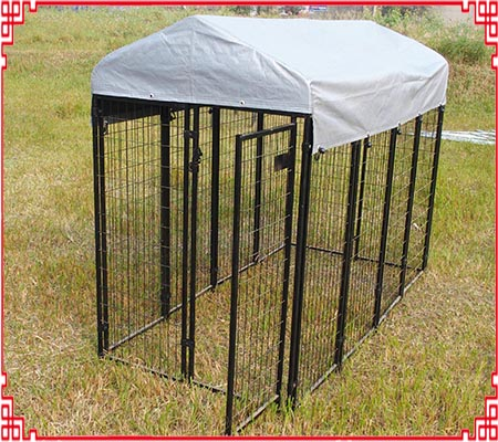 6x4x8 dog kennel