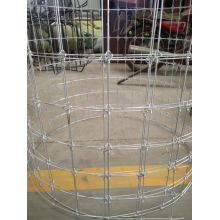 Best Quality for Plastic Net For Safety Protection CATTLE FENCE MESH NETTING export to Germany Manufacturers