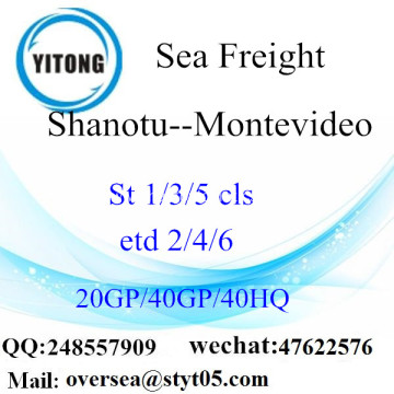 Shantou Port Sea Freight Shipping To Montevideo