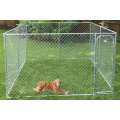 Large outdoor chain link dog run dog kennel