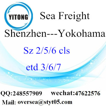 Shenzhen Port LCL Consolidation To Yokohama