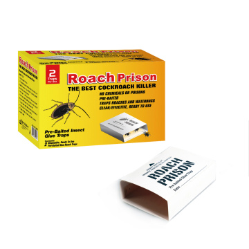 Indoors Roach Control Trap Prison