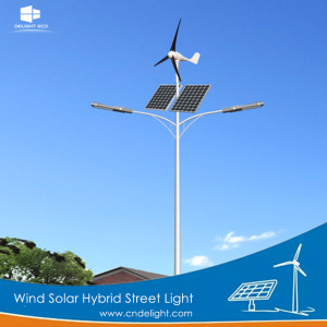 DELIGHT Wind Energy Turbine Generator and Solar Light