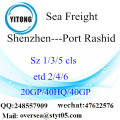 Shenzhen Port Sea Freight Shipping To Port Rashid