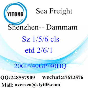 Shenzhen Port Sea Freight Shipping To Dammam