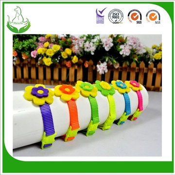 Designer Dog Collars Cat Breakaway Collar