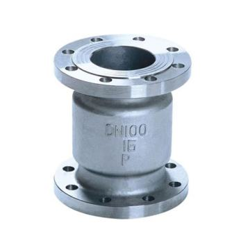 Spring loaded Vertical check valve
