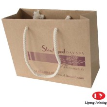 Kraft brown paper bags with twist handles