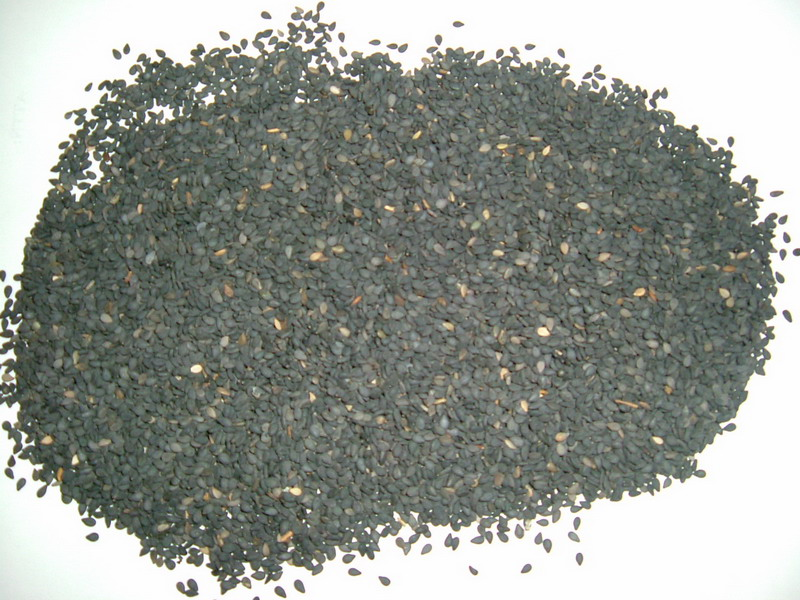Black Sesame Seed Extract Sesamin Powder