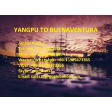 China for Central And South America Shipping Line Hainan Yangpu Sea Freight to Columbia Buenaventura export to Spain Manufacturer