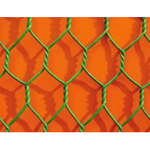 Discount Price for Welded Mesh Galvanized Hexagonal Wire Mesh supply to India Factory
