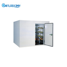 Mobile Commercial Freezer Room Construction