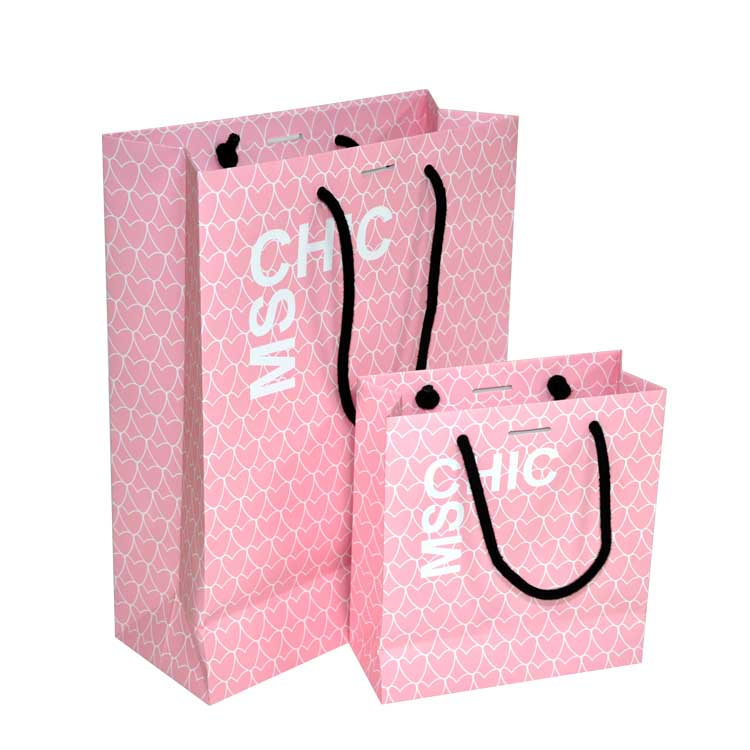 Luxury Shopping Paper bag for Clothing Package