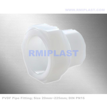 PVDF Female Coupling PN16