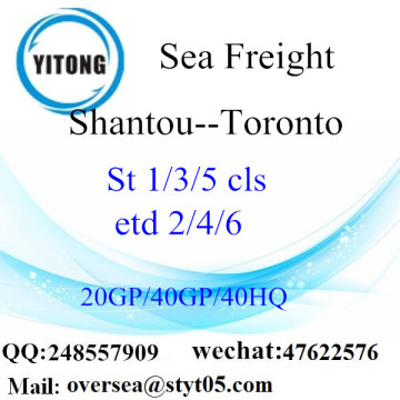 Shantou Port Sea Freight Shipping To Toronto