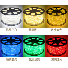 Outdoor AC110V led strip