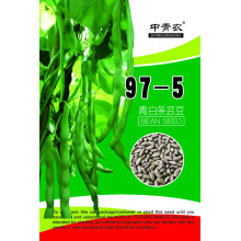 97-5 beans seeds in vegetable seeds for sale