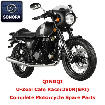 Qingqi Cafe Racer250R Complete Motorcycle Spare Part